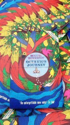 Octavio's Journey (1)